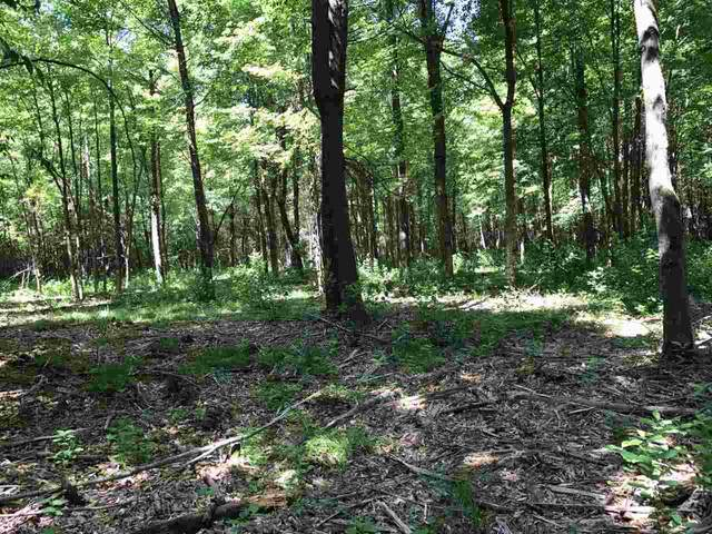Pheasant Farm Road, Peshtigo, WI 54157 (#50219233) :: Symes Realty, LLC