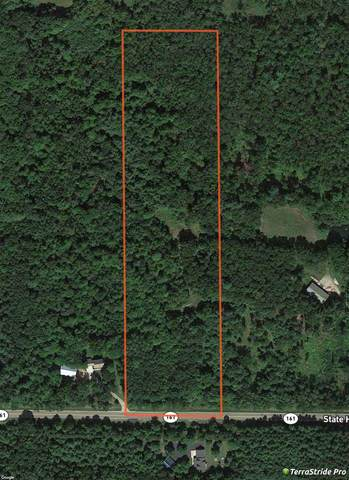 Hwy 161, Iola, WI 54945 (#50220133) :: Todd Wiese Homeselling System, Inc.