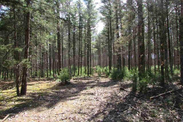 Hudziak Road, Waupaca, WI 54981 (#50220467) :: Symes Realty, LLC