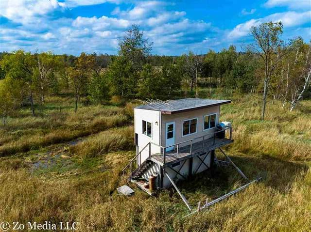 N6006 28TH Road, Pine River, WI 54965 (#50220502) :: Dallaire Realty