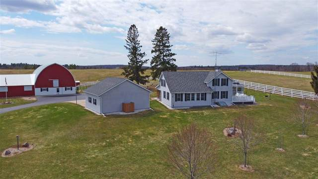 E1499 Moen Road, Iola, WI 54945 (#50220978) :: Todd Wiese Homeselling System, Inc.
