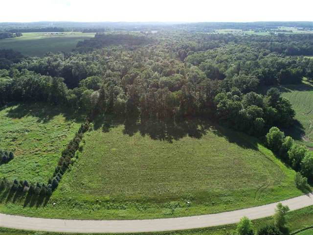 Riverpine Drive, Shawano, WI 54166 (#50222009) :: Todd Wiese Homeselling System, Inc.