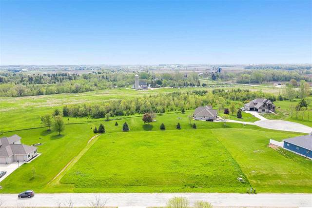4135 Gemstone Trail, De Pere, WI 54311 (#50222613) :: Todd Wiese Homeselling System, Inc.