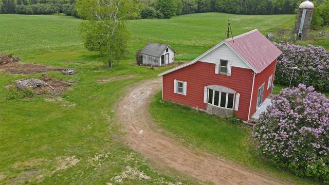 E662 Behnke Road, Iola, WI 54945 (#50222637) :: Todd Wiese Homeselling System, Inc.