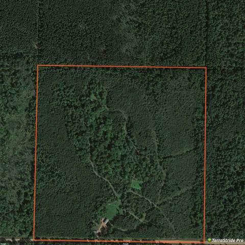 W14560 2ND AVE Road, Antigo, WI 54409 (#50222814) :: Carolyn Stark Real Estate Team