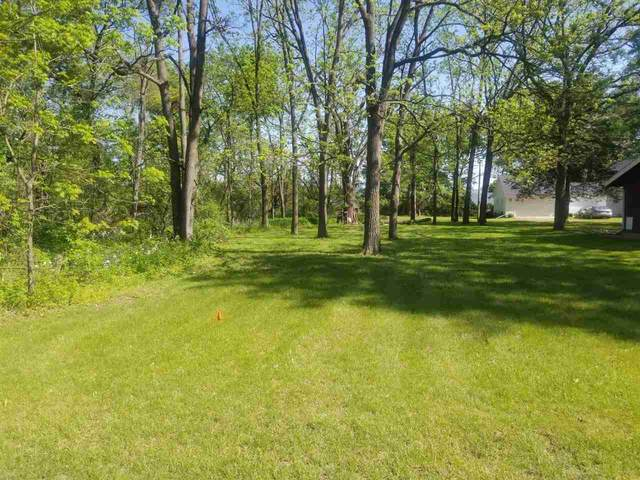 Bird Avenue, Wautoma, WI 54982 (#50222902) :: Todd Wiese Homeselling System, Inc.