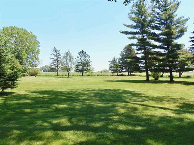 Sand Pit Road, Omro, WI 54904 (#50223059) :: Todd Wiese Homeselling System, Inc.