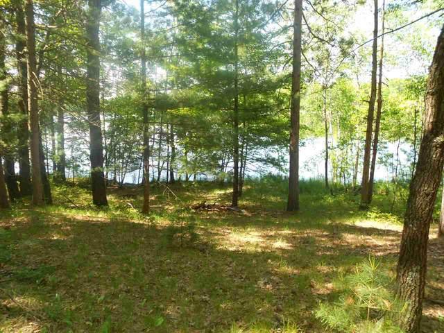Warrington Lake Drive, Gillett, WI 54124 (#50223124) :: Todd Wiese Homeselling System, Inc.