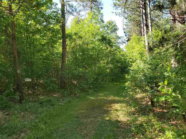 W Evergreen Drive, Waupaca, WI 54981 (#50223293) :: Ben Bartolazzi Real Estate Inc