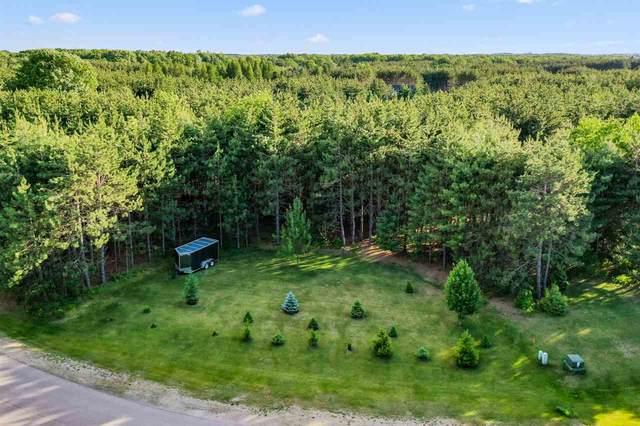 Hoganwood Circle, Sobieski, WI 54171 (#50223713) :: Todd Wiese Homeselling System, Inc.