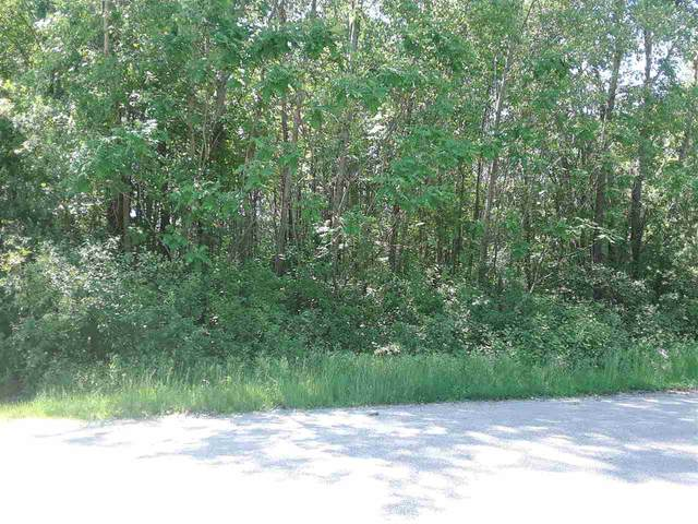 Beeler Drive, Cecil, WI 54111 (#50223819) :: Todd Wiese Homeselling System, Inc.