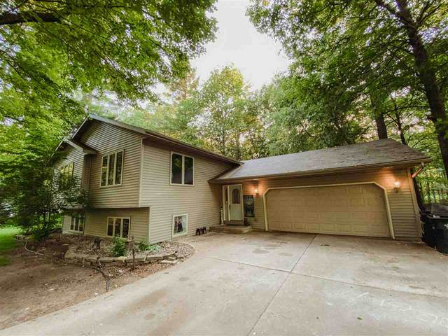 271 River Pine Drive, Shawano, WI 54166 (#50223999) :: Todd Wiese Homeselling System, Inc.