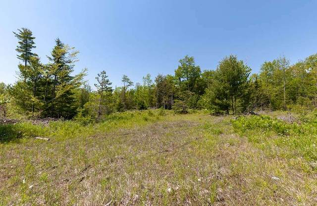 Hayward Lake Road, Menominee, MI 49858 (#50224094) :: Symes Realty, LLC