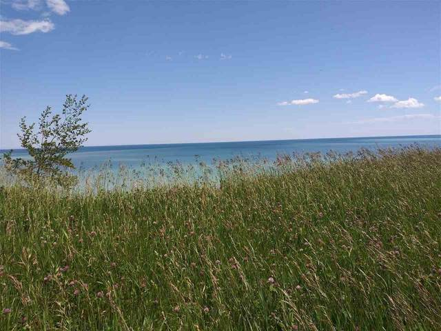 Lakeview Drive, Kewaunee, WI 54216 (#50224254) :: Ben Bartolazzi Real Estate Inc