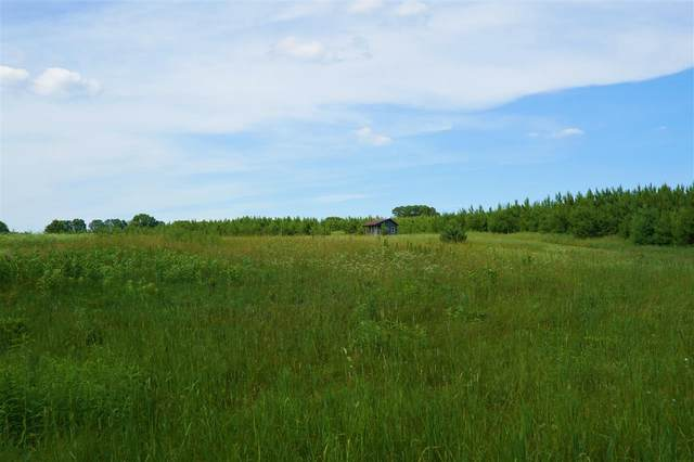 N5051 17TH BEND, Wild Rose, WI 54984 (#50224750) :: Todd Wiese Homeselling System, Inc.