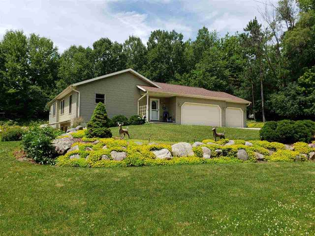 N2543 Draeger Road, Waupaca, WI 54981 (#50224806) :: Ben Bartolazzi Real Estate Inc