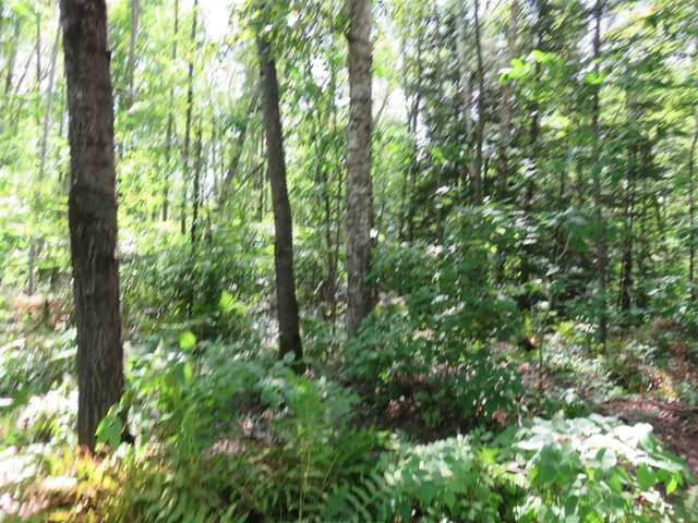 16911 Deer Track Lane, Townsend, WI 54175 (#50225095) :: Ben Bartolazzi Real Estate Inc