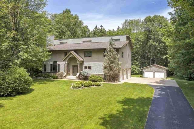 6680 Wintergreen Trail, Sobieski, WI 54171 (#50225421) :: Ben Bartolazzi Real Estate Inc