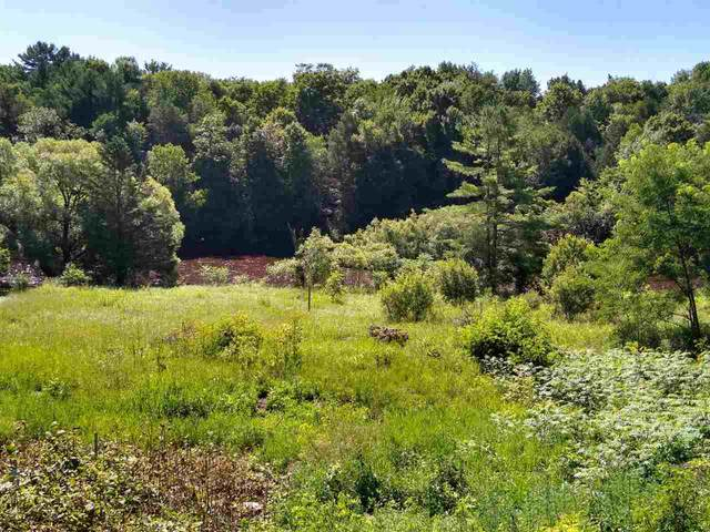 W2299 Hwy 22, Pulcifer, WI 54124 (#50225710) :: Dallaire Realty