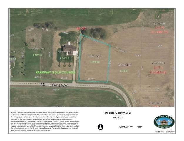 Mulligan Way, Pound, WI 54161 (#50226200) :: Carolyn Stark Real Estate Team
