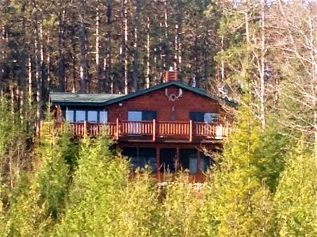 15740 Tree Farm Road, Mountain, WI 54149 (#50226410) :: Symes Realty, LLC