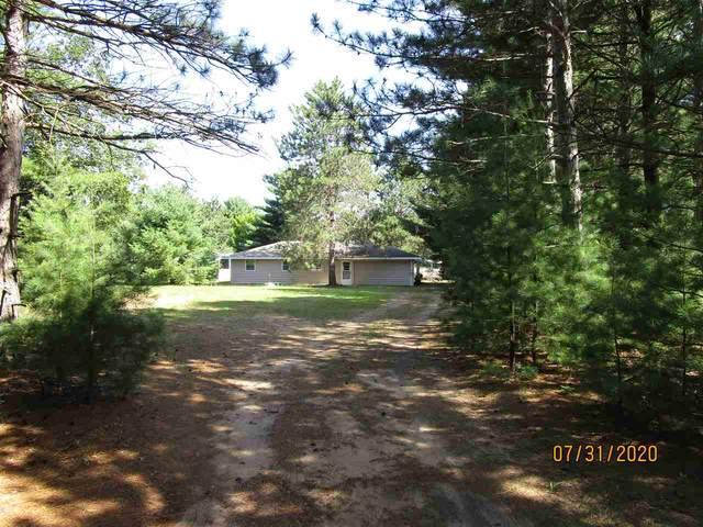 W6486 Hidden Springs Drive, Neshkoro, WI 54960 (#50226568) :: Ben Bartolazzi Real Estate Inc