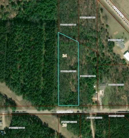 Brown Deer Avenue, Wautoma, WI 54982 (#50226693) :: Carolyn Stark Real Estate Team