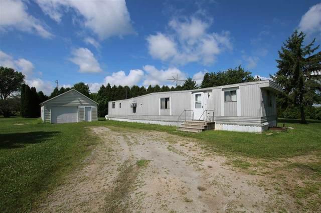 N9602 White Pine Road, Van Dyne, WI 54979 (#50226775) :: Symes Realty, LLC