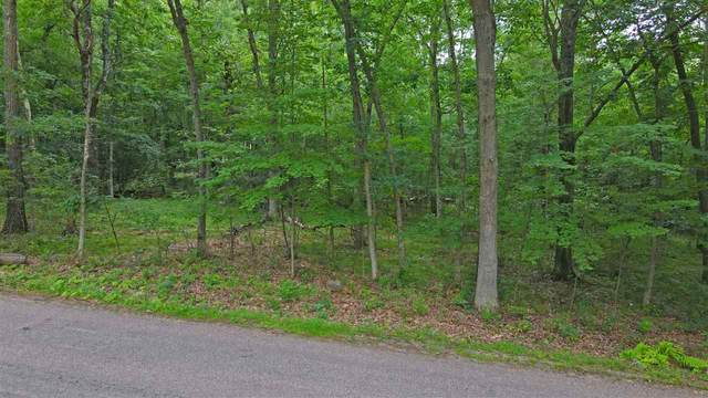 Woodridge Drive, Waupaca, WI 54981 (#50226839) :: Carolyn Stark Real Estate Team