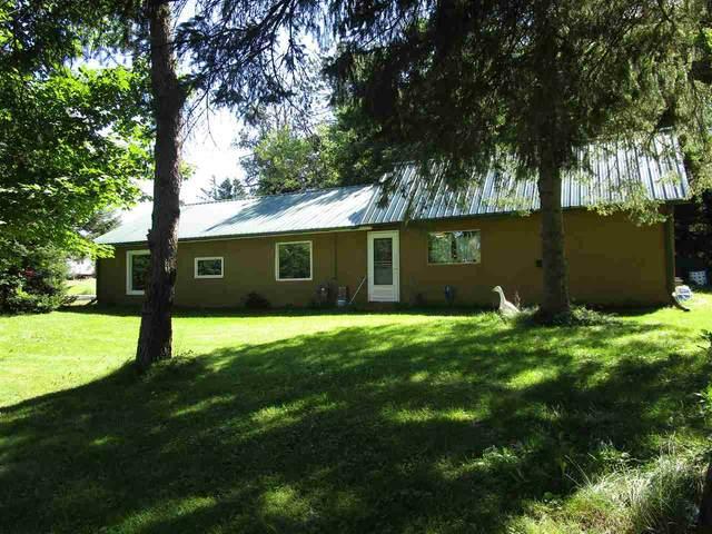 W7273 Hwy 47, Phlox, WI 54464 (#50227015) :: Carolyn Stark Real Estate Team