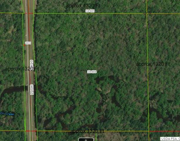 Hwy Z, Arkdale, WI 54613 (#50227230) :: Todd Wiese Homeselling System, Inc.