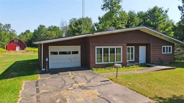 E784 Wolf River Road, Iola, WI 54945 (#50227521) :: Carolyn Stark Real Estate Team