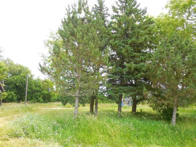 N8378 Black Ash Road, Algoma, WI 54201 (#50227682) :: Carolyn Stark Real Estate Team