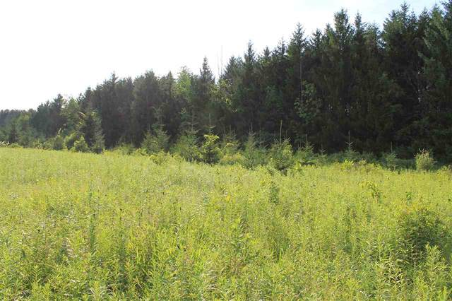 Blueberry Lane, Waldo, WI 53093 (#50228043) :: Symes Realty, LLC
