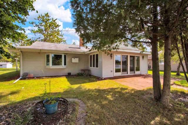 N169 Cedar Springs Circle, Neshkoro, WI 54960 (#50228745) :: Carolyn Stark Real Estate Team