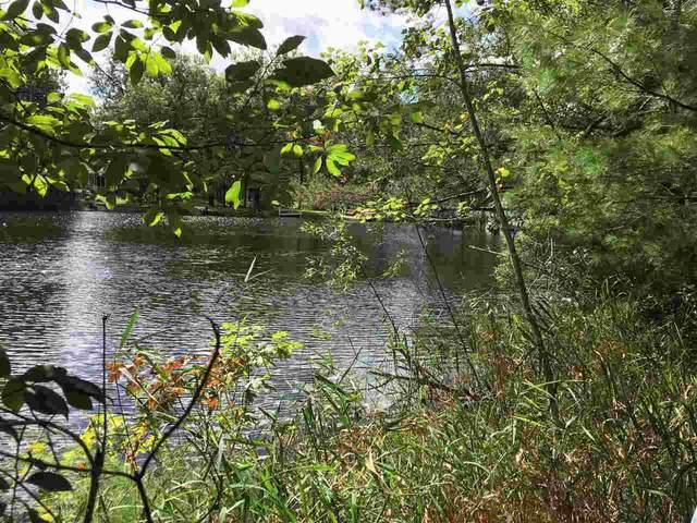 Hidden Springs Drive, Neshkoro, WI 54960 (#50229099) :: Ben Bartolazzi Real Estate Inc