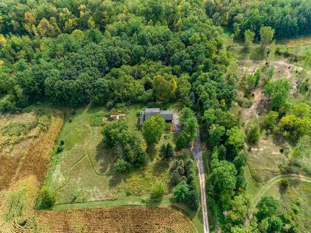 N590 Rabbit Road, Dale, WI 54931 (#50229567) :: Ben Bartolazzi Real Estate Inc