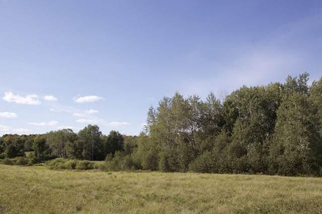 N4407 Schertz Lane, Tigerton, WI 54486 (#50229719) :: Carolyn Stark Real Estate Team