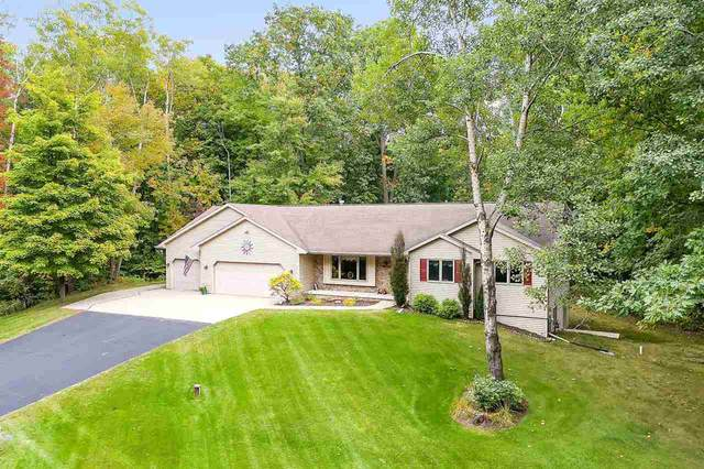 1580 Mapleridge Circle, Sobieski, WI 54171 (#50230095) :: Carolyn Stark Real Estate Team