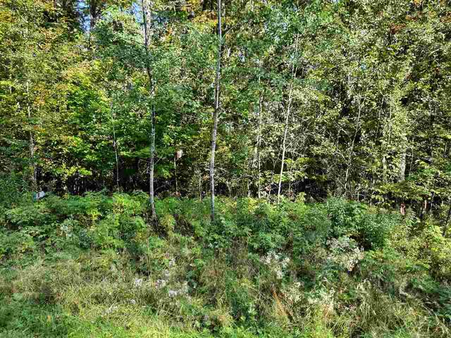 Badger Trail, White Lake, WI 54491 (#50230108) :: Ben Bartolazzi Real Estate Inc