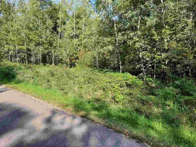 Badger Trail, White Lake, WI 54491 (#50230160) :: Ben Bartolazzi Real Estate Inc
