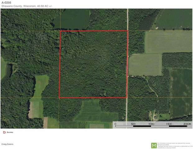 Henning Creek Road, Bowler, WI 54416 (#50230194) :: Todd Wiese Homeselling System, Inc.