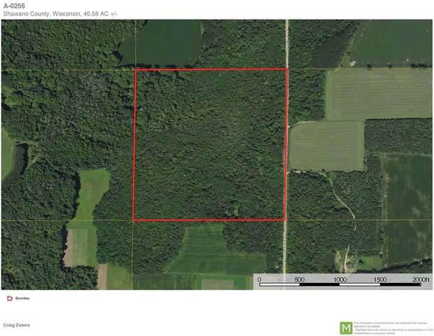 Henning Creek Road, Bowler, WI 54416 (#50230194) :: Carolyn Stark Real Estate Team