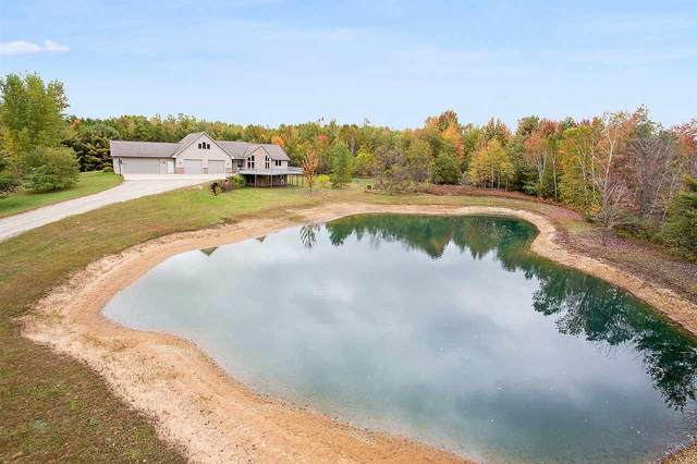 6810 Hwy S, Sobieski, WI 54171 (#50230221) :: Carolyn Stark Real Estate Team