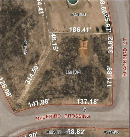 Bluebird Crossing, Omro, WI 54963 (#50230223) :: Dallaire Realty