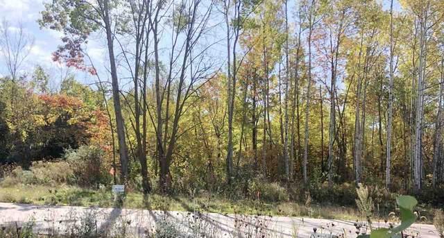 Trinity Ridge Circle, De Pere, WI 54115 (#50231096) :: Ben Bartolazzi Real Estate Inc