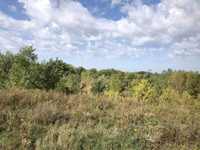Scray Hill Road, De Pere, WI 54115 (#50231114) :: Ben Bartolazzi Real Estate Inc