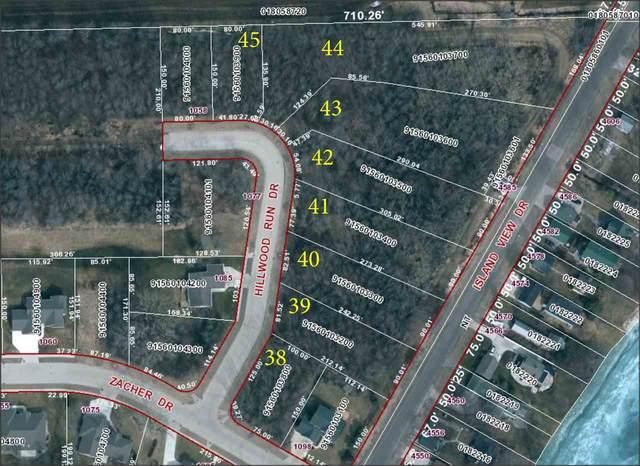 Hillwood Run Drive, Oshkosh, WI 54901 (#50231177) :: Dallaire Realty