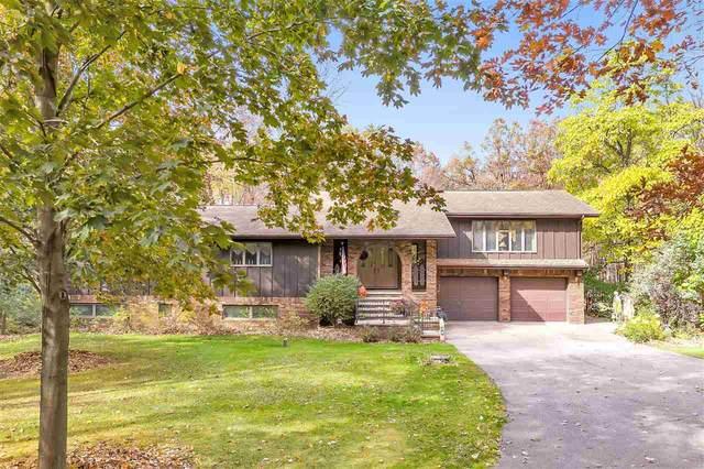 N2527 Pleasant View Lane, Waupaca, WI 54981 (#50231252) :: Carolyn Stark Real Estate Team
