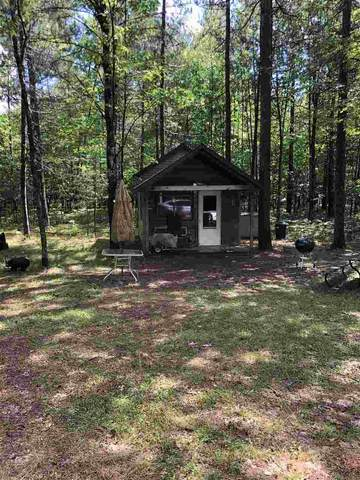 Bakely Circle, Minocqua, WI 54548 (#50231699) :: Dallaire Realty